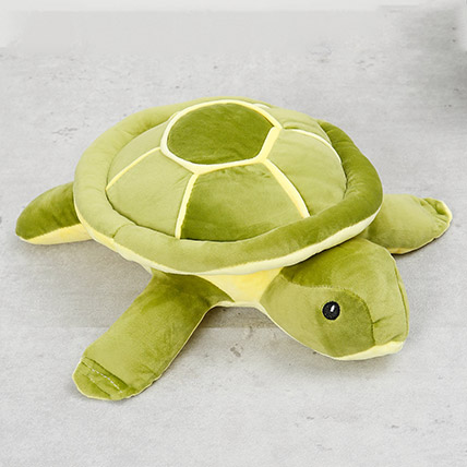 Turtle Soft Toy: