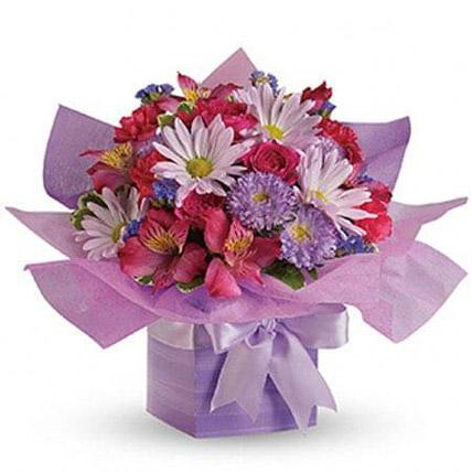 Lovely Lavender: