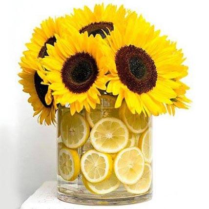 The Fresh Feeling: I Am Sorry Flowers