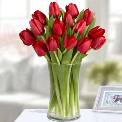 20 Red Tulip Arrangement: Tulip Flowers