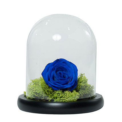 Elegant Blue Rose: Karwa Chauth Gift to Wife