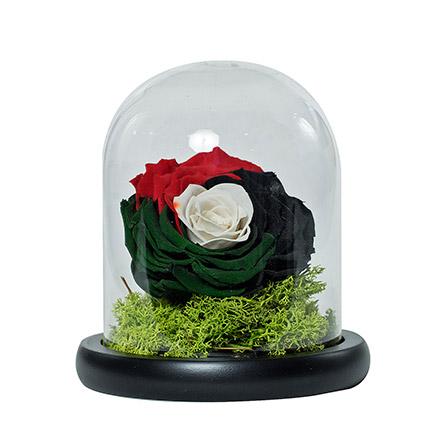 Impressive Uae Flag Colored Rose: National Day Gifts