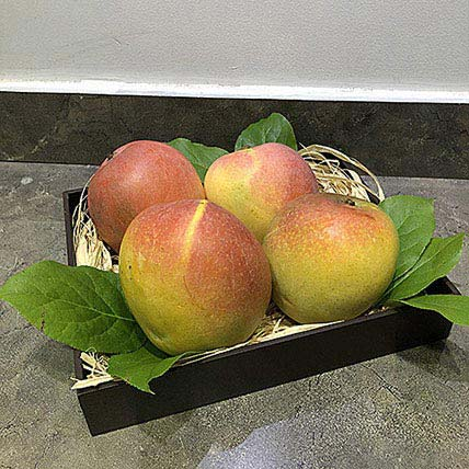 Mango Honeygold in Wooden Tray: