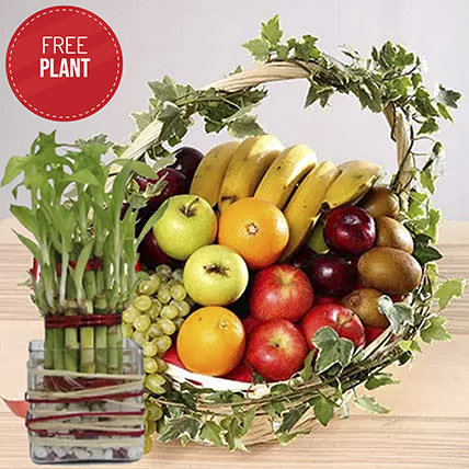 Juicy Fruits Basket with Free Lucky Bamboo: