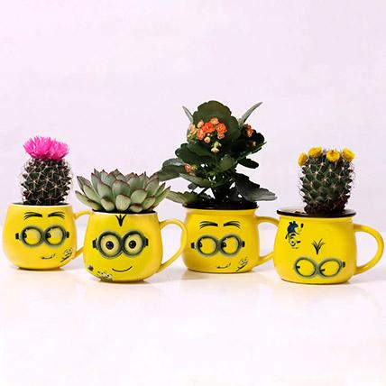 Set of 4 Plants in Emoticon Mugs: Plants  Shop