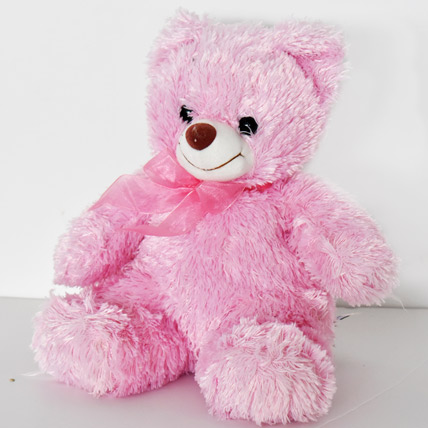 Soft and Fully Pink Teddy: