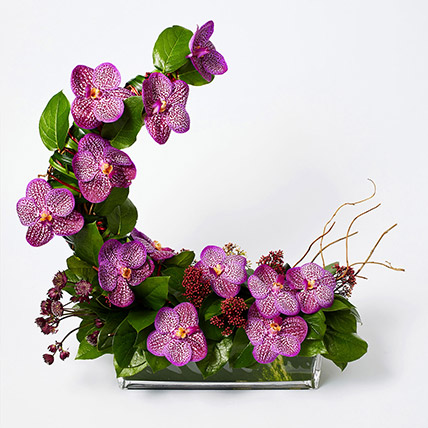 Striking Mixed Flowers Rectangular Vase Arrangement: New Arrival Flowers