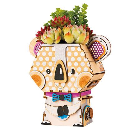 Pot Koala For Kids: Toys for Kids