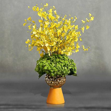 Floral Sunshine: Premium Flowers