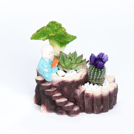 Echeveria and Cactus in Monk Planter: Plant Combos