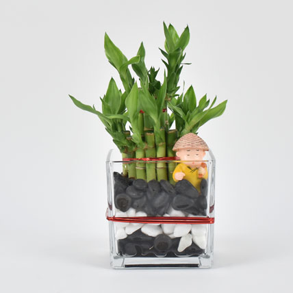 2 Layer Lucky Bamboo with Monk: Lucky Bamboo