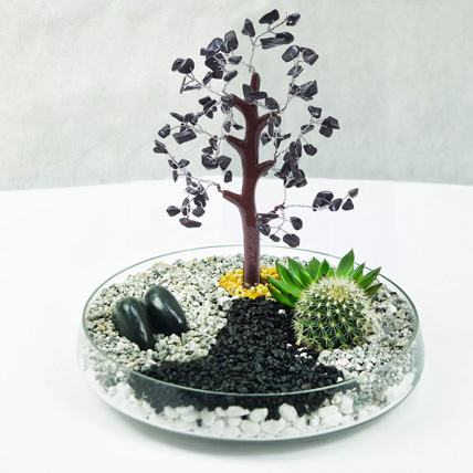 Premium Multicouloured Wish Tree & Plants Glass Platter: New Arrival Plants