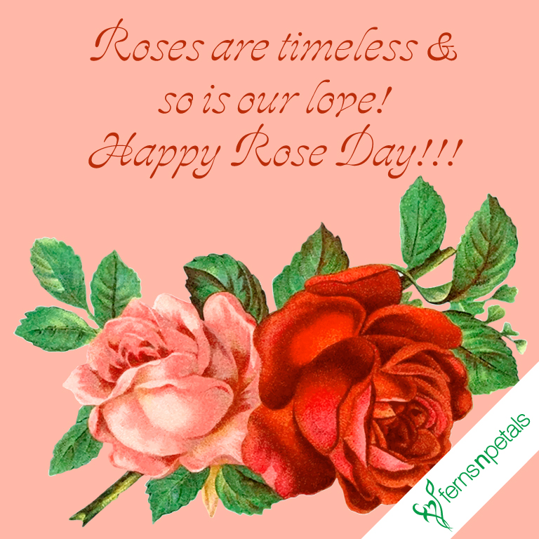 creative wishes for rose day