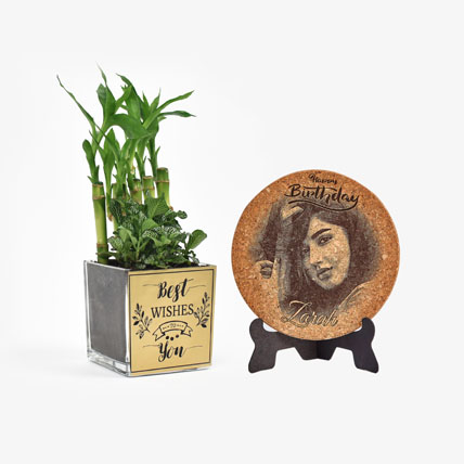 Best Wishes Plant n Personalised Plaque Combo