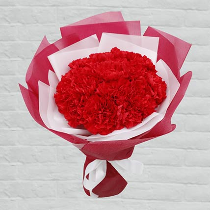 20 Red Carnations Bouquet