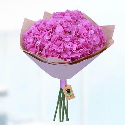 20 Stems Pink Hydrangea Bunch