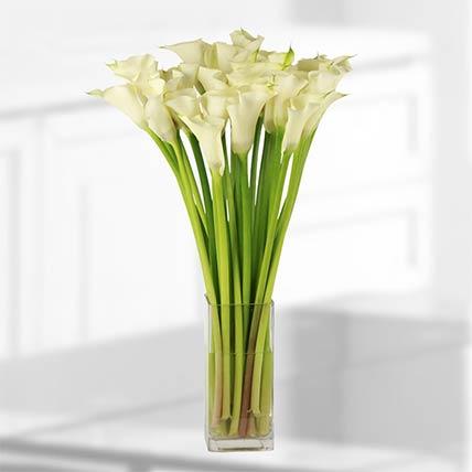 25 Stems White Calla Lilies Vase