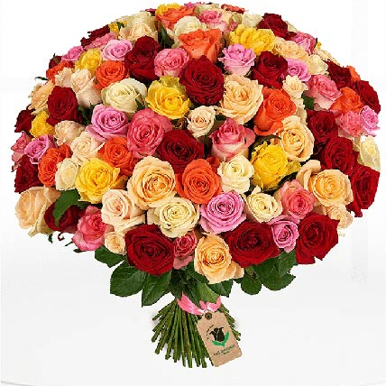50 Enchanting Mix Roses Bunch