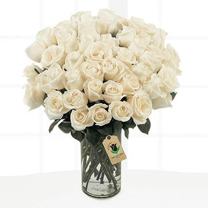 60 Stems Cream Coloured Roses Vase