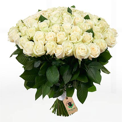 75 Stems Heavenly White Rose Bunch