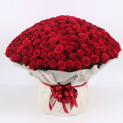 1501 Red Roses Bouquet