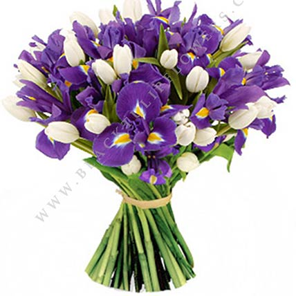Blue Iris & White Tulips Bunch- Deluxe