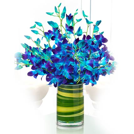 Magical Blue Orchids Vase- Premium