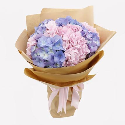 Pink & Purple Hydrangeas Bunch- Deluxe