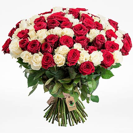 Red & White Roses Bunch- Standard