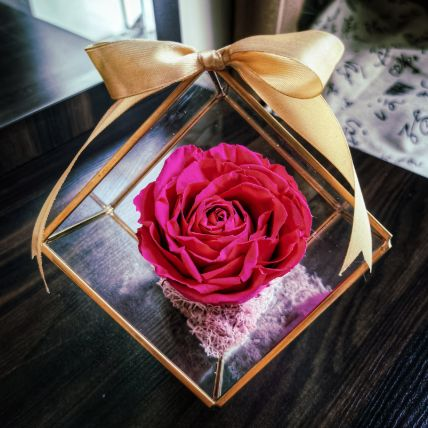 Forever Rose In The Square Glass Container
