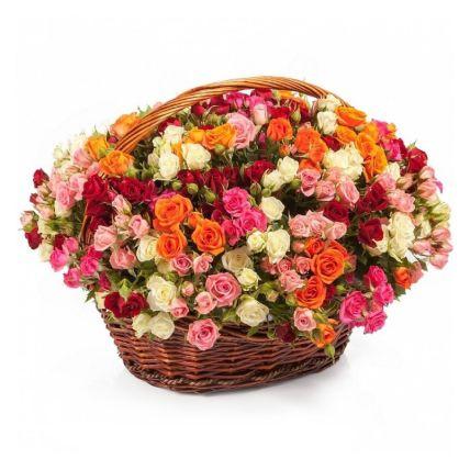 Magical Roses Basket- Standard