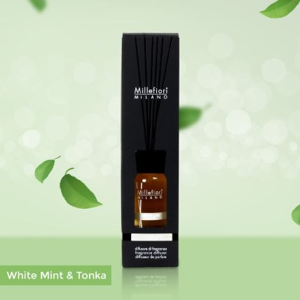 Reed Diffuser White Mint & Tonka Fragrance