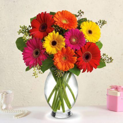 Heavenly Multicoloured Gerberas In Glass Vase