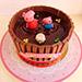 Joy Of Chocolate Cake 12 Portion