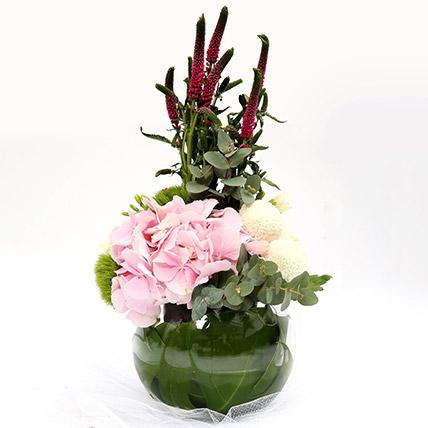 Hydrangea and Veronicas Exotic Flower Arrangement SG